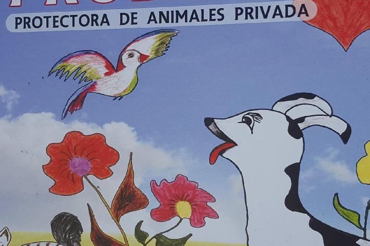 PRODEAN-Proderechos Animal Campo de Gibraltar