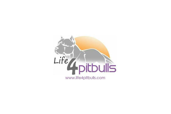 Life4pitbulls