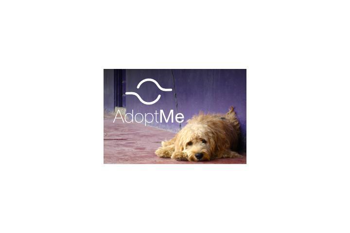 Proyecto AdoptMe