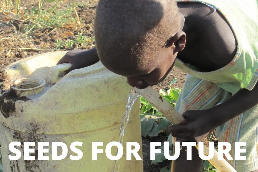SEEDS FOR FUTURE: Fundación San Patricio y Asociación Manyatta