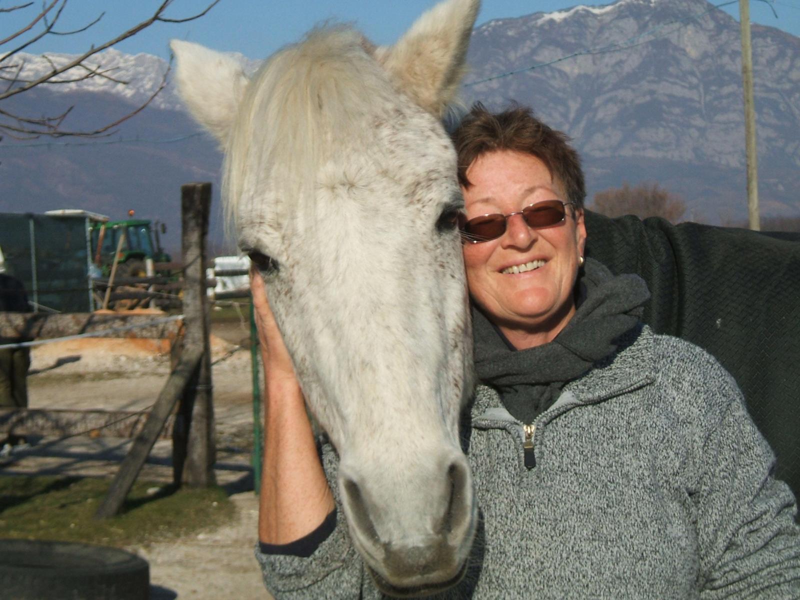 EZ's Place, Rifugio del Cavallo, onlus