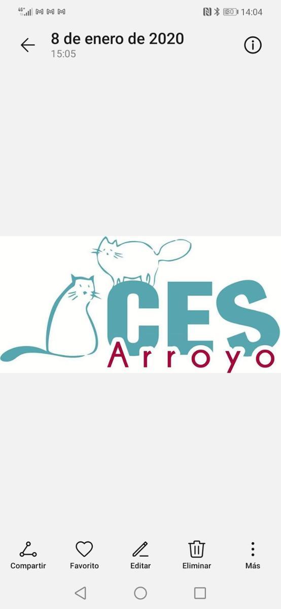 CES Arroyo Valladolid