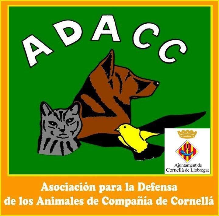 adacc cornella