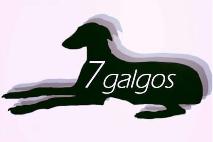 7GALGOS