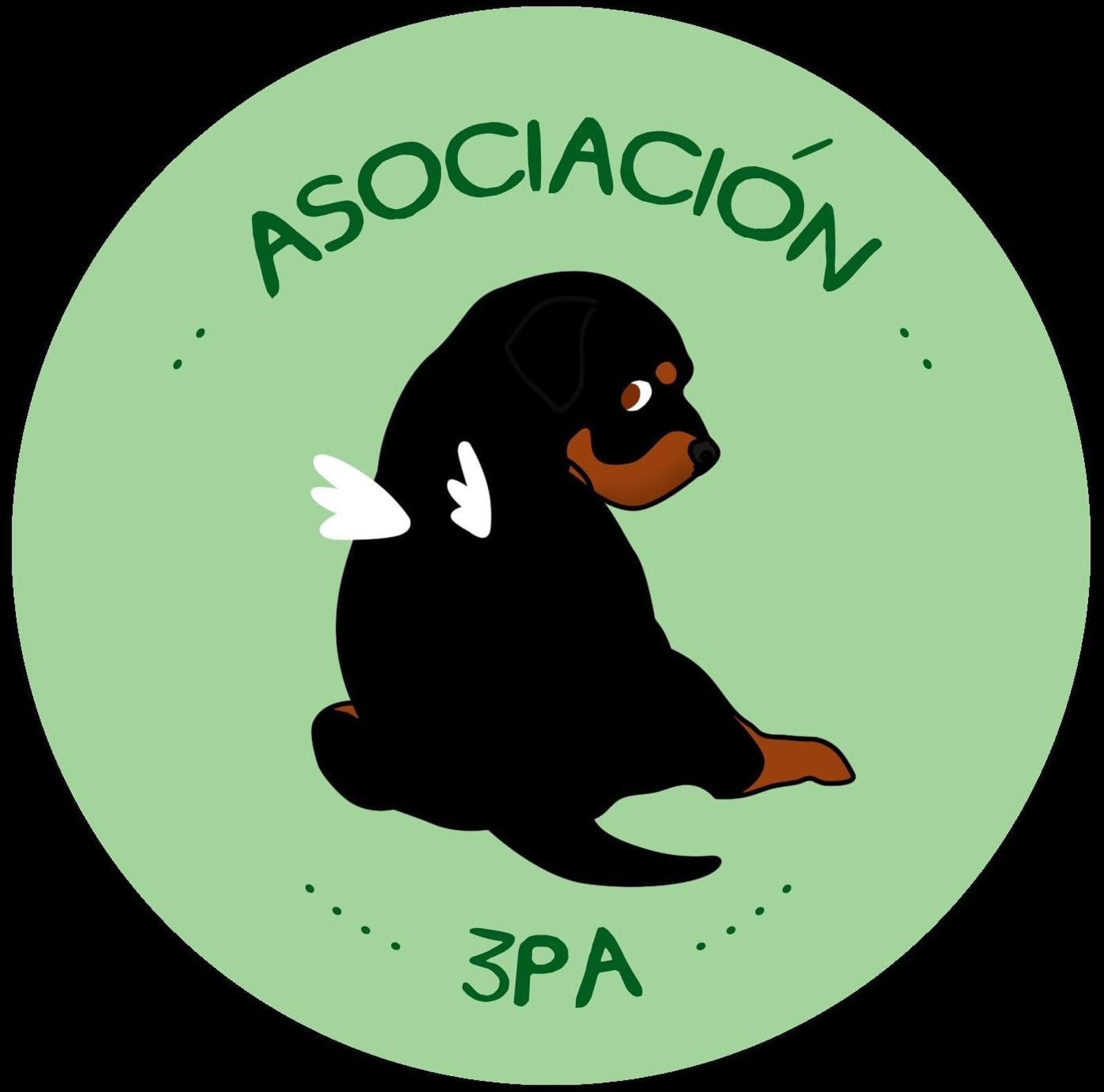 Ppp en adopción 3Pa