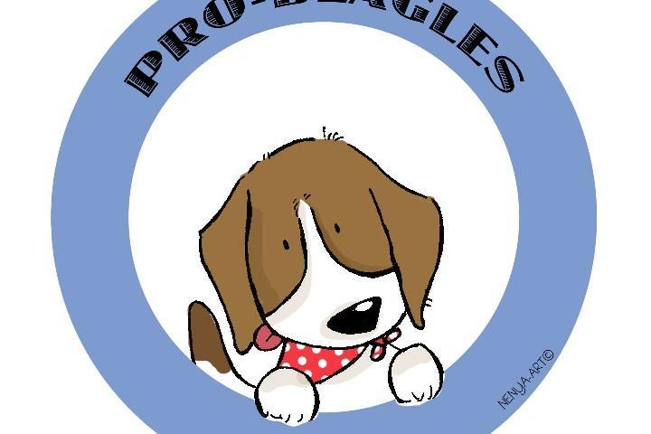 PRO-BEAGLES