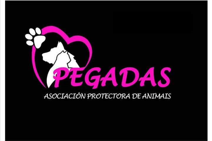 PEGADAS , Asociación protectora de animais