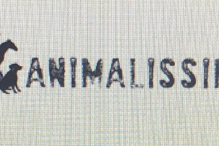Animalissimi ONLUS