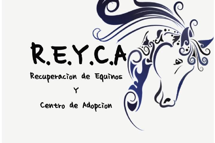 R.E.Y.C.A