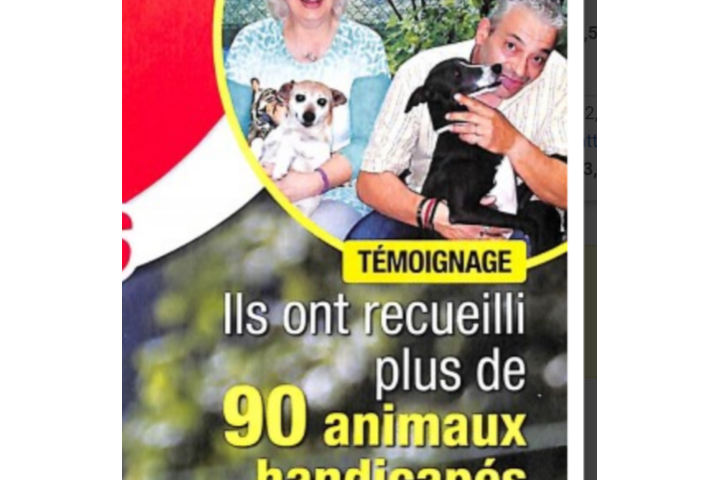 Assist animaux