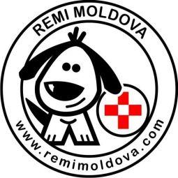 Remi Moldova