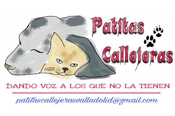 Patitas Callejeras Valladolid