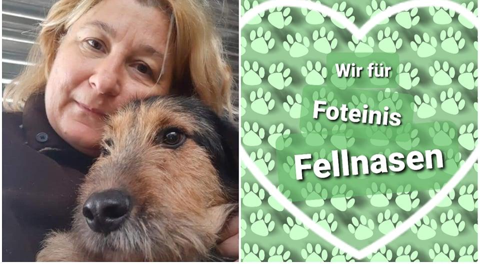 Foteinis Fellnasen