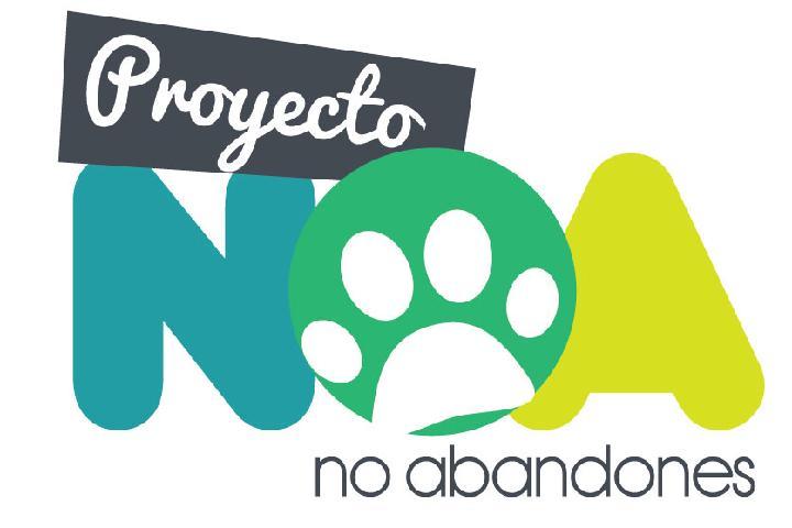 Proyecto NOA