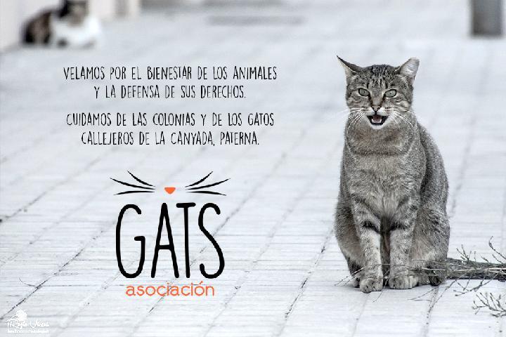 Asociación GATS