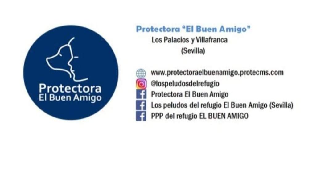 Asociación protectora El Buen Amigo