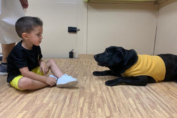 Intervenciones asistidas con perros a niños/as con diversidad funcional