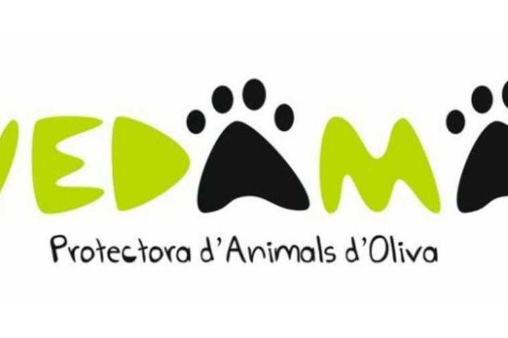 Protectora de animales de Oliva