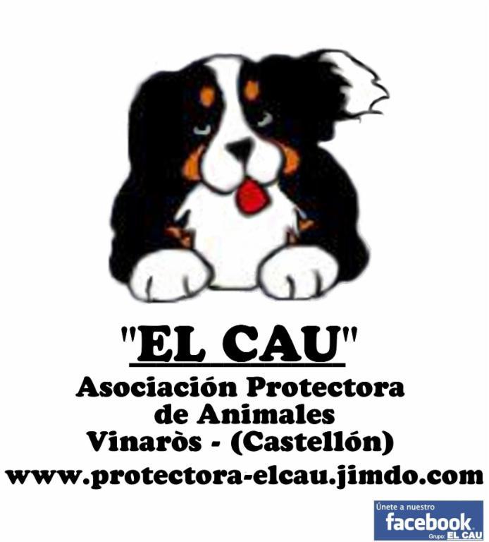 EL CAU - Asociación Protectora de Animales