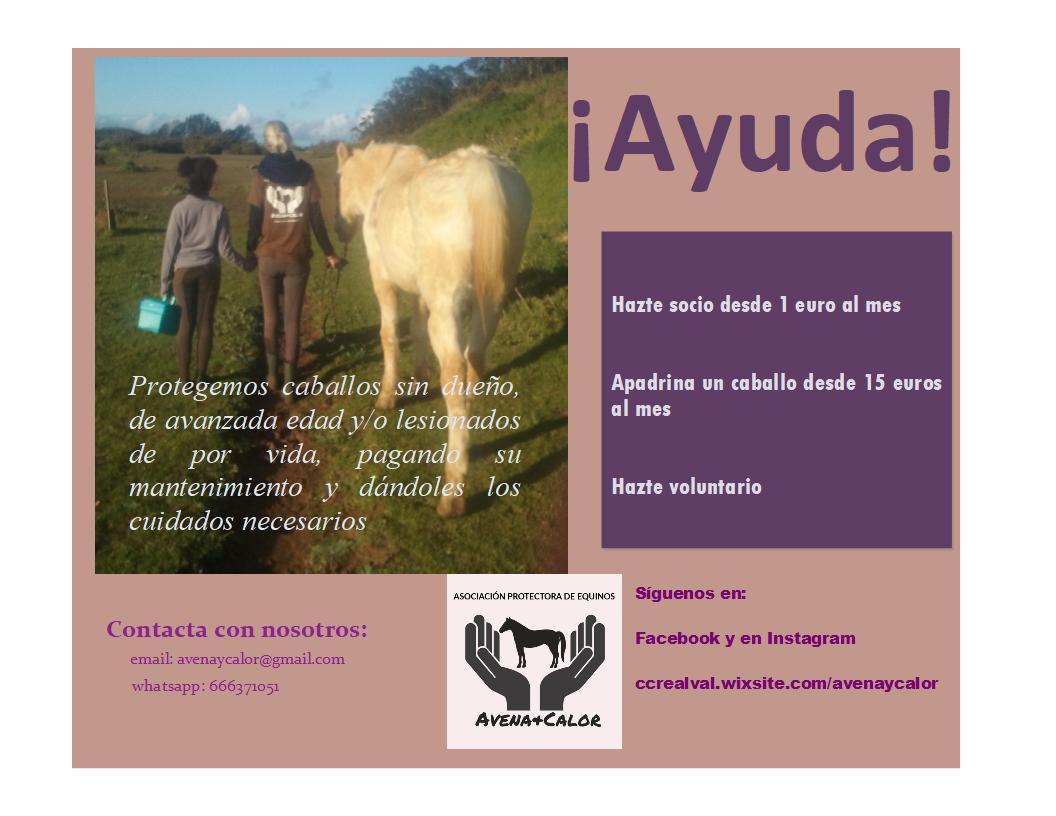 Asociación Protectora de Equinos Avena y Calor