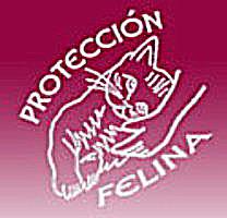 Protección Felina - Nuestros rescatados