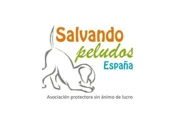 Salvando Peludos España 2015