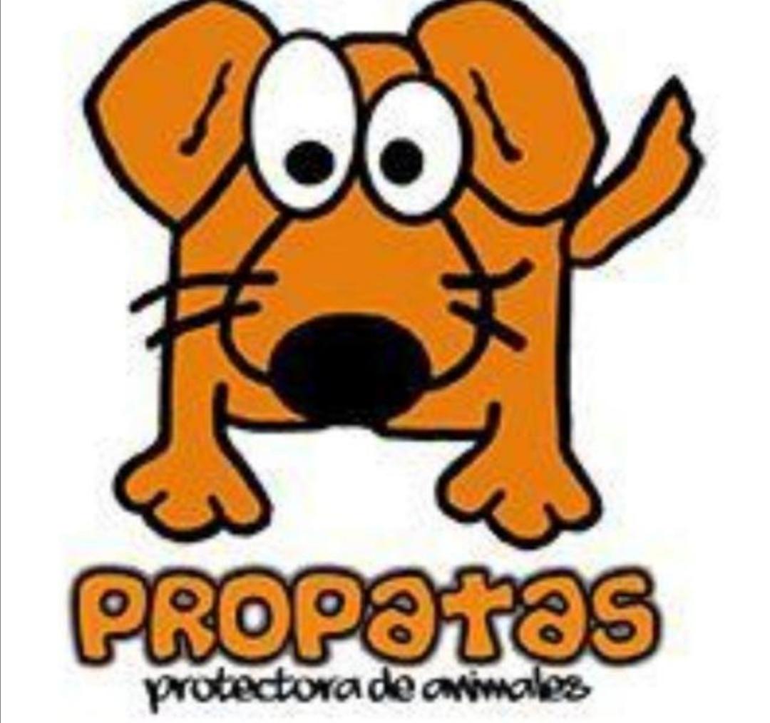 Propatas