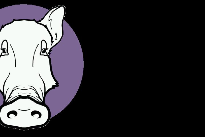 Guarida Animal