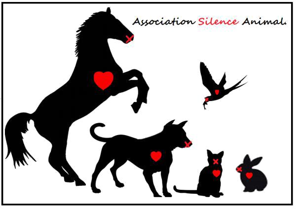 """Résultat de recherche d'images pour """"silence animal"""""""