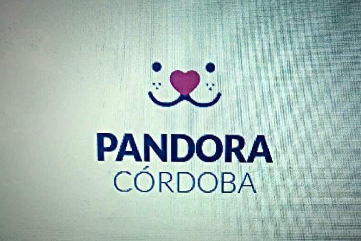 Pandora Córdoba