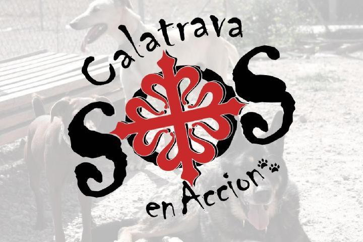 CALATRAVA EN ACCIÓN