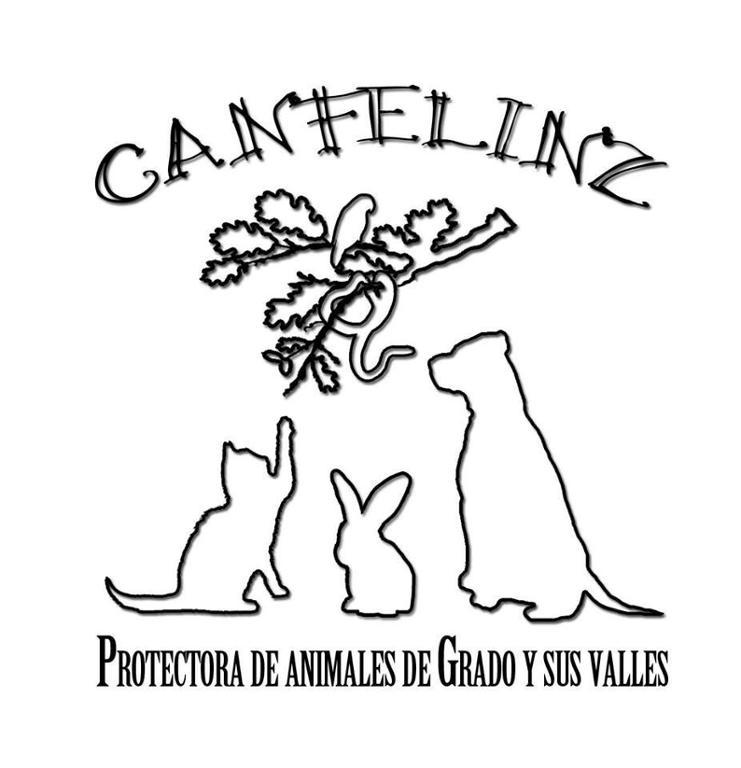 CanFelin´z Protectora de Animales de Grado