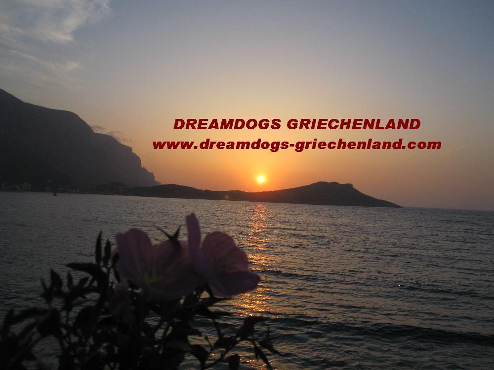 Dreamdogs-Griechenland
