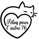 FELINS POUR L'AUTRE 76