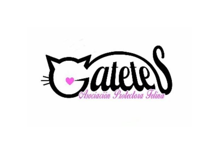 Asociación Protectora Felina