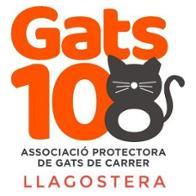 ASSOCIACIÓ PROTECTORA DE GATS DE CARRER