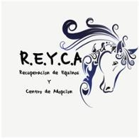 R.E.Y.C.A. Recuperación de Equinos Y Centro de Adopción