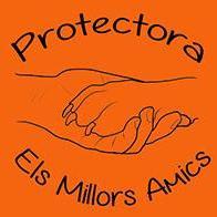 Protectora Els Millors Amics