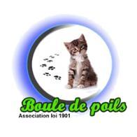 ASSOCIATION BOULES DE POILS - Louviers--Normandie