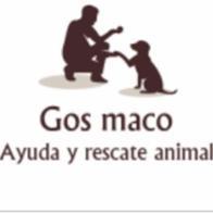 Gos Maco