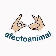Afecto  Animal