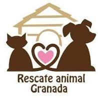 RESCATE ANIMAL GRANADA RESCATE ANIMAL GRANADA