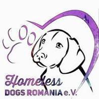 Homeless Dogs Romania eV