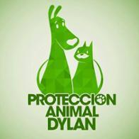 Asociacion Proyecto Dylan