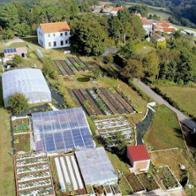 Fundación Galicia Verde