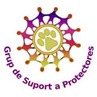 Manager Grup de Suport a Protectores