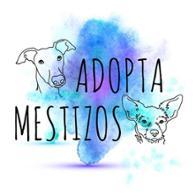 ADOPTA MESTIZOS  Vero&Irene