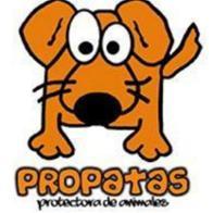 Propatas Asociación Protectora de animales