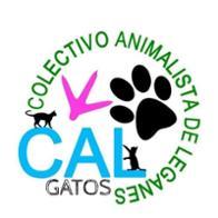 CAL- Adoptar un gato Leganés