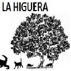 Refugio de Gatos La Higuera